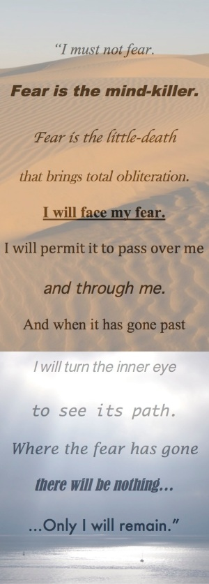 Litany Against Fear--I must not fear, fear is the mind killer